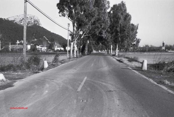 La carretera, amb poc més de 5 metres d'ample, tenia eucaliptus als costats i era un perill durant els dies de tramuntana quan es trencaven algunes branques.